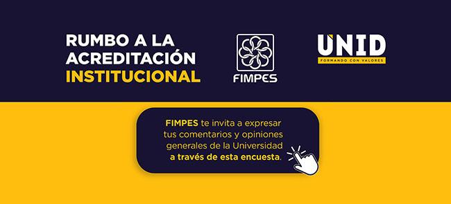 FIMPES - encuesta 2019